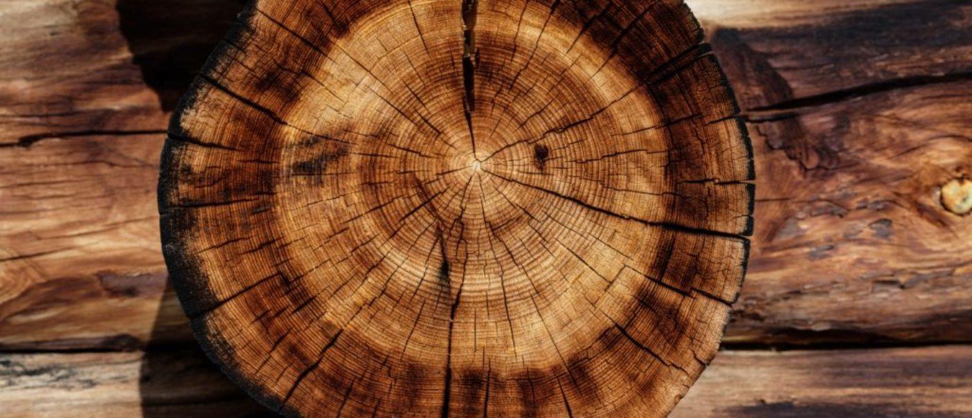Des tableaux fabriqués exclusivement à partir de bois